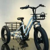 Tricycle électrique - Fatbike Heavy